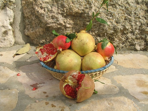 Pomegranates in a wicker basket, Jerusalem, Israel | © Melech ben Ya'aqov, Karaite Insights